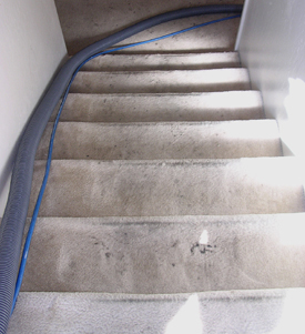 Carpet Cleaning Gallery San Jose Tile Cleaning Marble